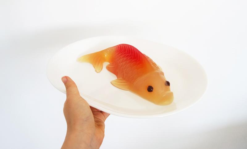 koi jelly agar agar